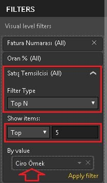 Power BI Desktop- Visual Filters - Top N Power BI Desktop'ta Filtreler (Power BI Filters)